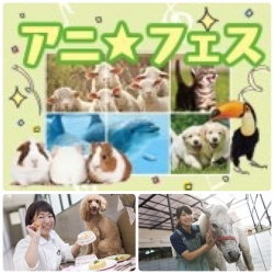 Animal Featival アニ☆フェス