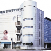 中央動物専門学校