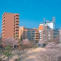 広島コンピュータ専門学校